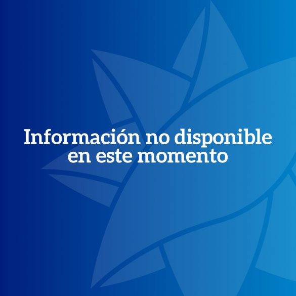 Información no disponible en este momento